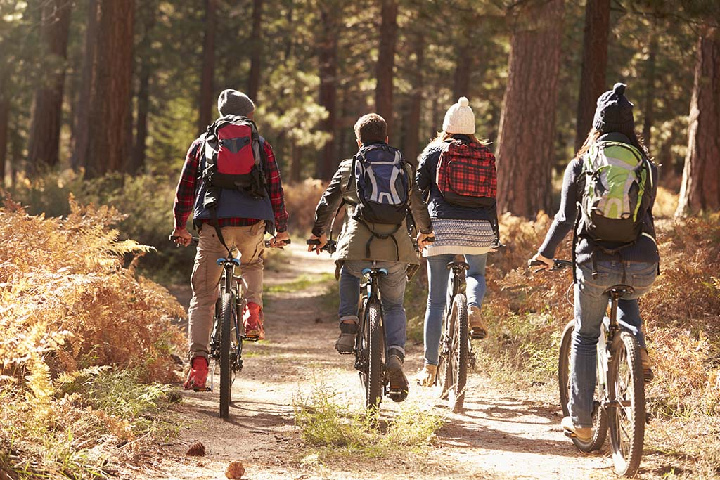 Four young people biking together
