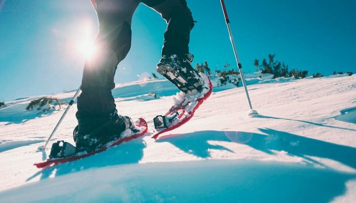 With snowshoes you are not limited on hiking trails