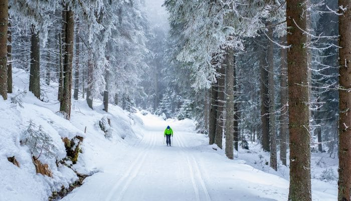 Cross country skiing slovenia