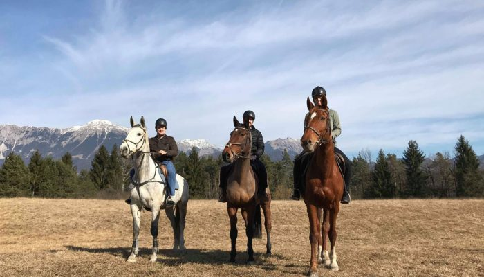 Group horse riding Bled