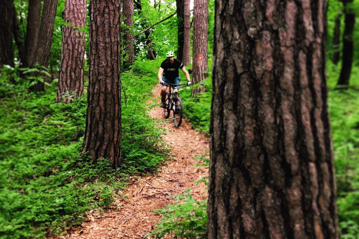 Discovering Ljubljana MTB trails