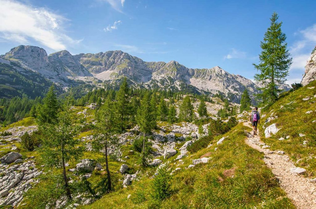 Spend the day on hut to hut hiking