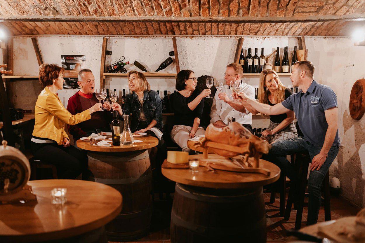 Wine cellar tasting in Bled