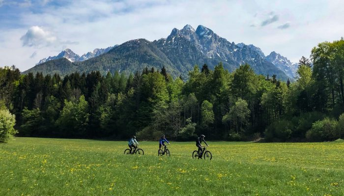 Cycling through fields in Kranjska Gora