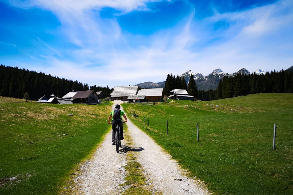 Cycling on Pokljuka Plateau Zajavornik