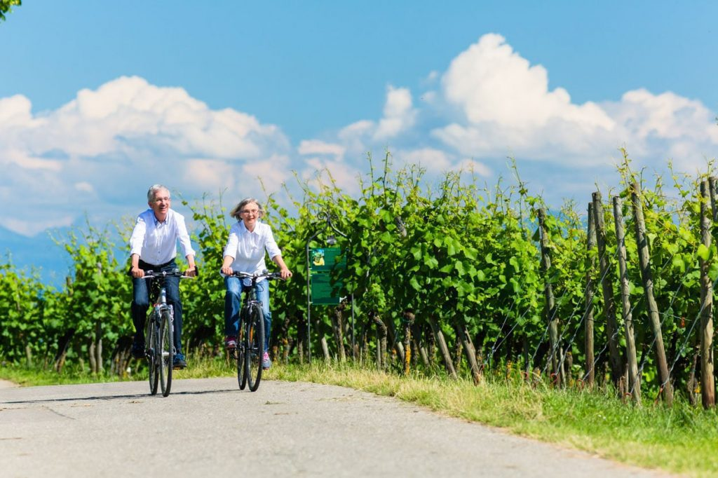 Cycling through vineyards in one of Slovenias wine regions