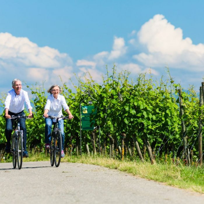 Couple cycling and passing vineyards