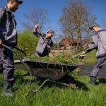 Farm work in Ljubljana
