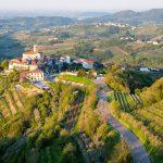 The view on vineyards in Goriška Brda