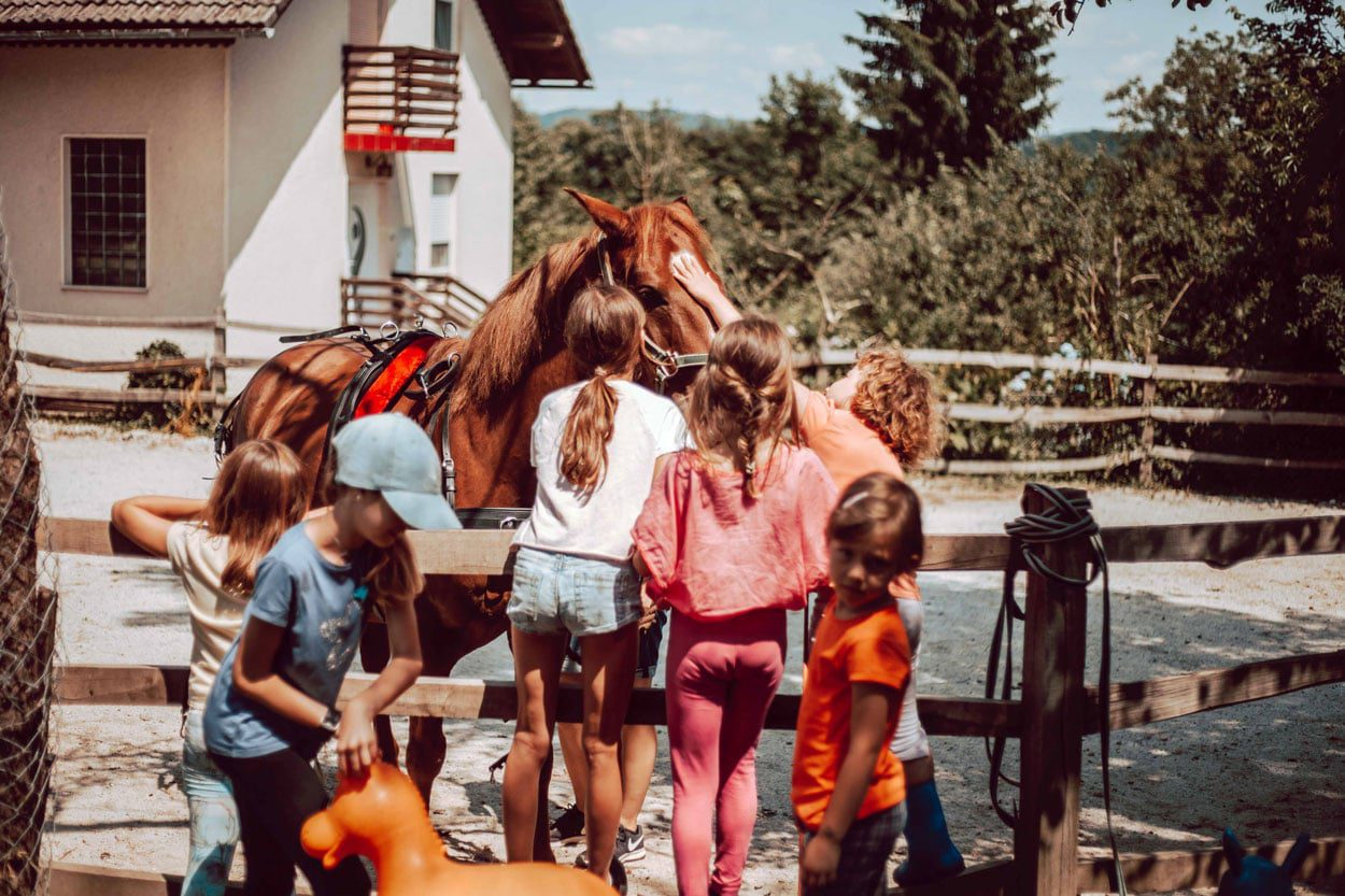 Horse riding for kids in Ljubljana