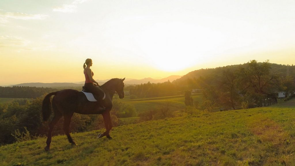 Horse riding with sunset view