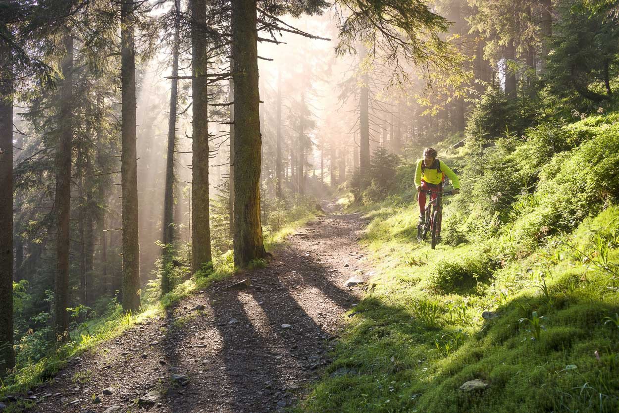 Biking trough woods in Kranjska Gora