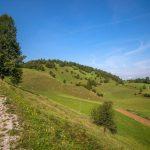 Biking trough Slovenian country side