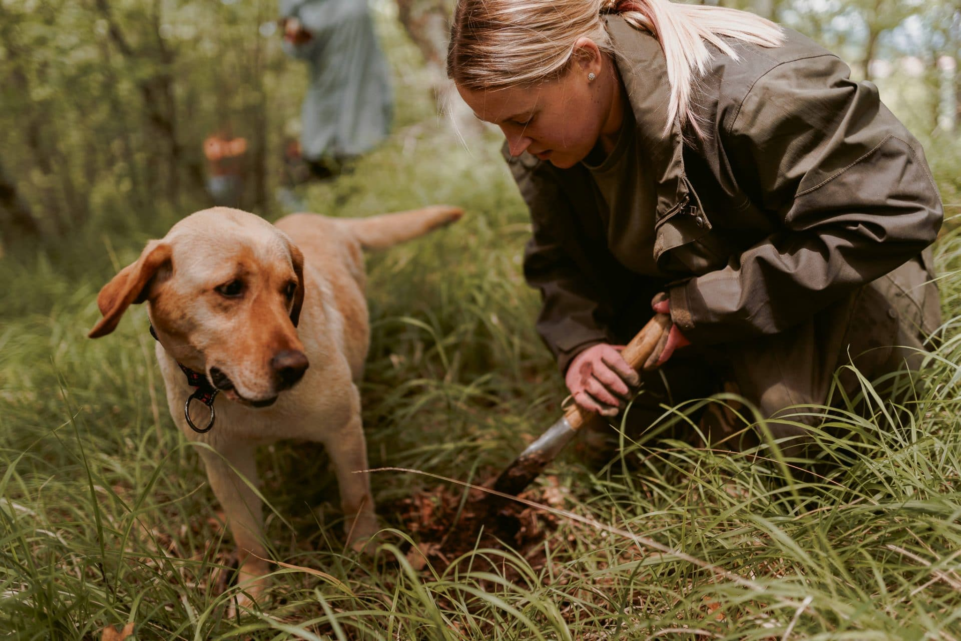 slovenia-truffle-hunting