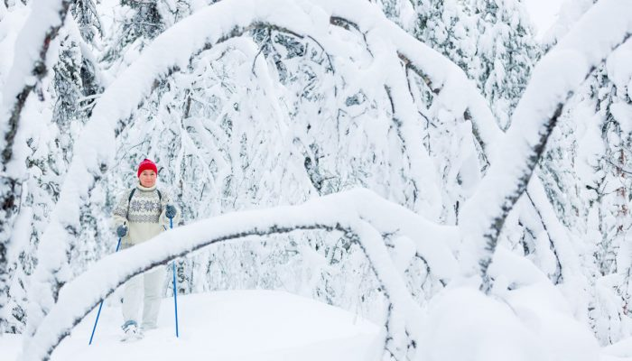 Snowshoeing through snowy forests