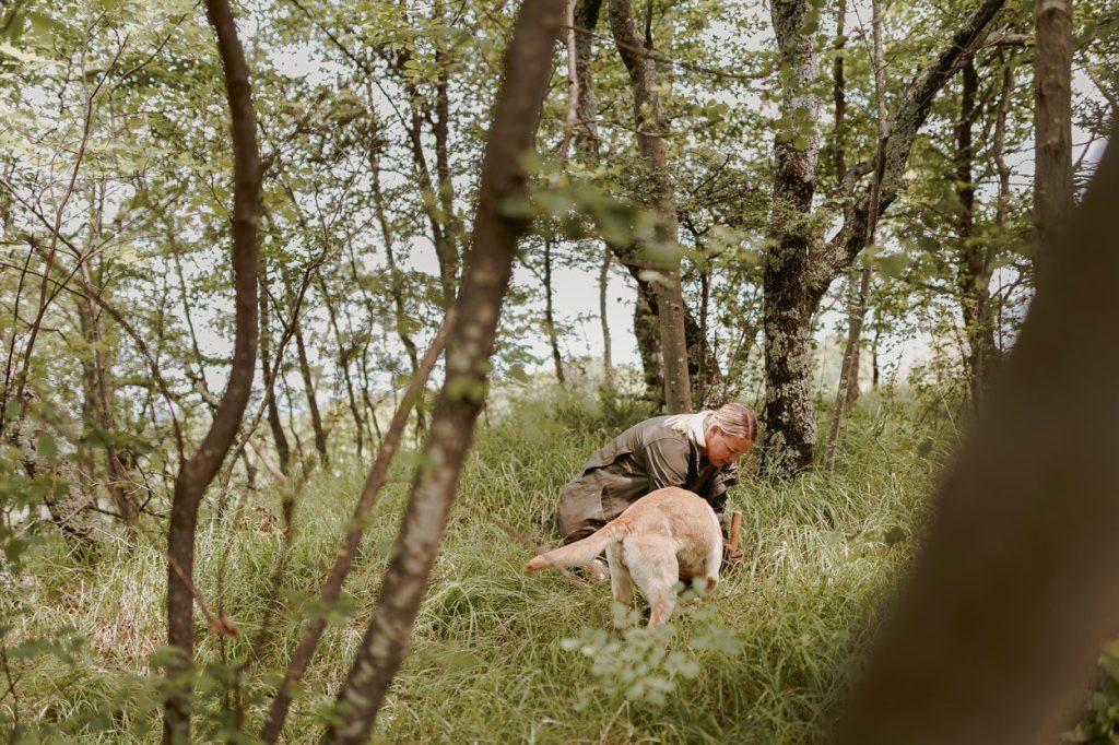 Truffle hunting near Ljubljana