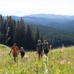 visevnik hiking through pokljuka meadows